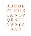 Bokstavsposter + Alfabet koppar