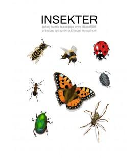 Barntavla Insekter