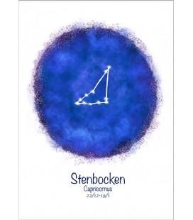 Stjärntecken Stenbocken