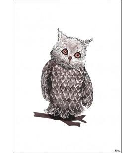 Barntavla Owly