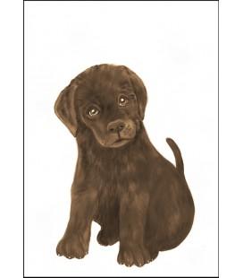 Barntavla Labradorvalp brun
