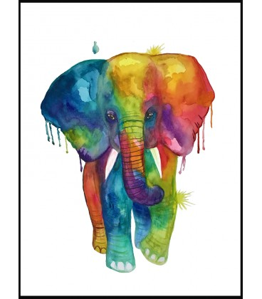 Elephant in colors