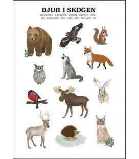 Djuren i skogen